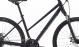 Велосипед Specialized Ariel Mechanical Disc (2018) 2