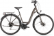 Велосипед Cube Touring Pro Easy Entry (2019) brown´n´silver 1