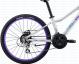 Подростковый велосипед Giant Enchant 1 24 Disc (2017) 1