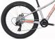 Подростковый велосипед Specialized Riprock 24 (2018) Silver 3