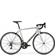 Велосипед Merida Scultura 200 (2019) SilkTitan/Black