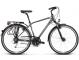 Велосипед Kross Trans 5.0 (2019) Graphite/Silver Glossy 1