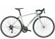 Велосипед Trek Domane AL 2 W (2019) 1