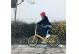 Складной велосипед Shulz Goa V yellow (2019) 7