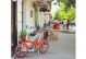 Складной велосипед Shulz Easy red (2019) 6