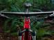 "Велосипед Trek X-Caliber 8 29"" (2019) Cardinal 2"