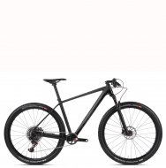 Accent Peak 29 carbon team x01 eagle (2019)
