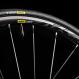 Велосипед Canyon Endurace WMN CF SL Disc 7.0 Stealth Shiny 2