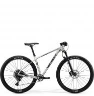 Велосипед Merida Big.Nine NX Edition (2020) SilkTitan/Silver