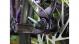 Велосипед Trek Fuel EX 5 (2020) Black/Purple Lotus 5