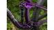 Велосипед Trek Fuel EX 5 (2020) Black/Purple Lotus 6