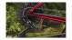 Велосипед Trek Procaliber 9.7 (2020) Rage Red 4