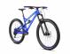 Велосипед Dartmoor Blackbird Evo 29 (2020) 1