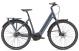 Электровелосипед Giant DailyTour E+ 2 LDS Power (2020) 1