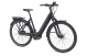 Электровелосипед Giant DailyTour E+ 1 LDS (2020) 2