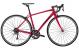 Велосипед Trek Domane AL 2 Women's (2020) Magenta 1