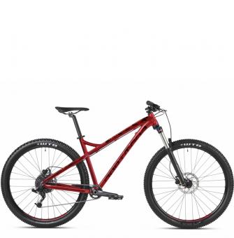 Велосипед Dartmoor Primal Intro 29 (2020)