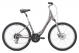 Велосипед Giant Liv Sedona DX W  (2020) 1