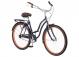 Велосипед Schwinn Baywood (2020) Blue 2