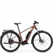 Электровелосипед  Merida eBig.Nine 300 SE EQ (2021) SilkBronze/Black