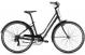 Велосипед Giant LIV Flourish 3 (2021) Gunmetal Black 1