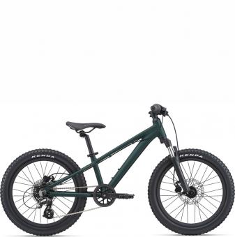 Детский велосипед Giant STP 20 FS (2021)