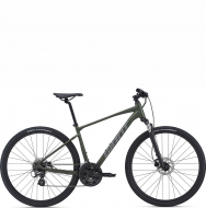 Велосипед Giant Roam 4 Disc (2021) Moss Green