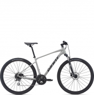 Велосипед Giant Roam 3 Disc (2021) Concrete