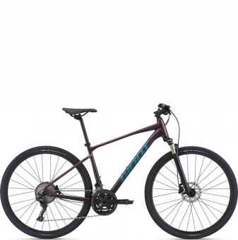 Велосипед Giant Roam 0 Disc (2021) Rosewood