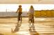 Велосипед Giant Momentum iNeed Street (2021) Blue Gray 9