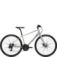 Велосипед Giant Alight 3 DD Disc (2021) Desert Sage