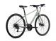 Велосипед Giant Alight 3 DD Disc (2021) Desert Sage 1