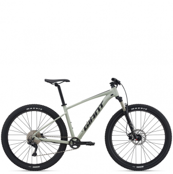 Велосипед Giant Talon 29 1 (2021) Desert Sage