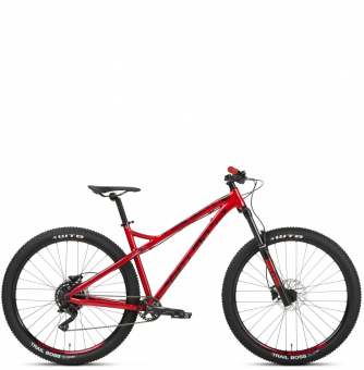 Велосипед Dartmoor Primal Intro 29 (2021)