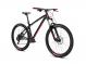Велосипед Dartmoor Sparrow Intro (2021) 1