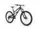 Велосипед Dartmoor Blackbird Intro 29 (2021) 1