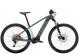 Электровелосипед Trek Powerfly 4 (2022) Matte Solid Charcoal/Matte Miami 1