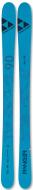 Горные лыжи Fischer Ranger 90 Fr (2021)