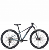 Велосипед Giant Liv Tempt 29 0 (2022)