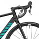 Велосипед Canyon Endurace 7 WMN Disc Stealth 2