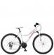 Велосипед Schwinn Mesa Womens (2017) 1